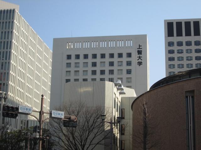 杉山セリナさんは上智大学の学部はどこ?